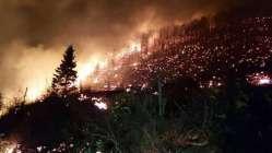 Trabzon'da ki ormanları PKK'ya Pontusçular mı yaktırdı?